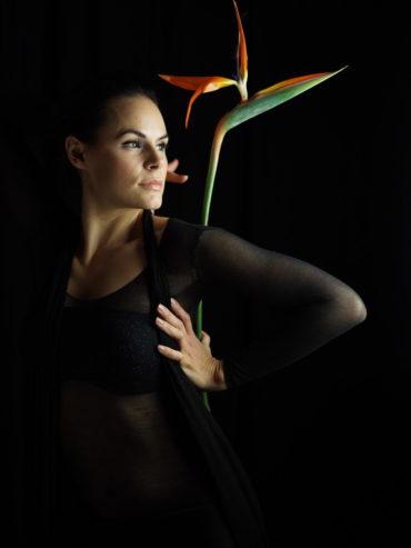 Silvia Orchidaceae